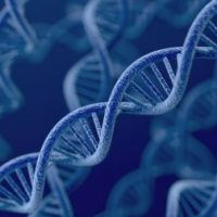 Genetics Research Paper Topics